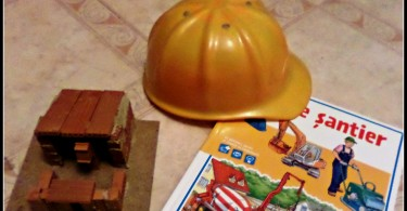 Consiliul raional Ştefan Vodă anunţă concurs pentru ocuparea funcţiei publice vacante de specialist în construcţii în cadrul direcţiei construcţii, gospodărie comunală şi drumuri